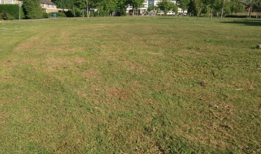 zinloze monocultuur van kort gemaaid gras