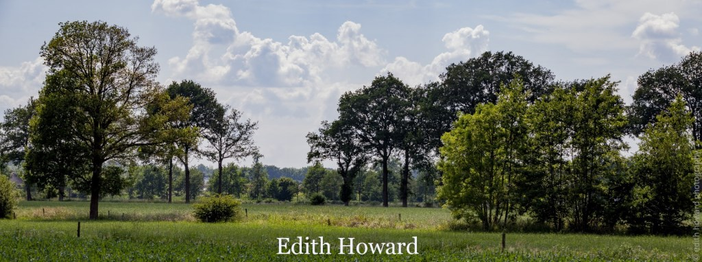 Foto: Edith Howard © DPG Media