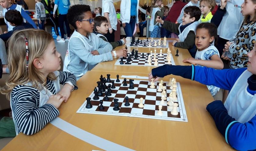 Kinderen van Triodus concentreren zich op het schaakspel