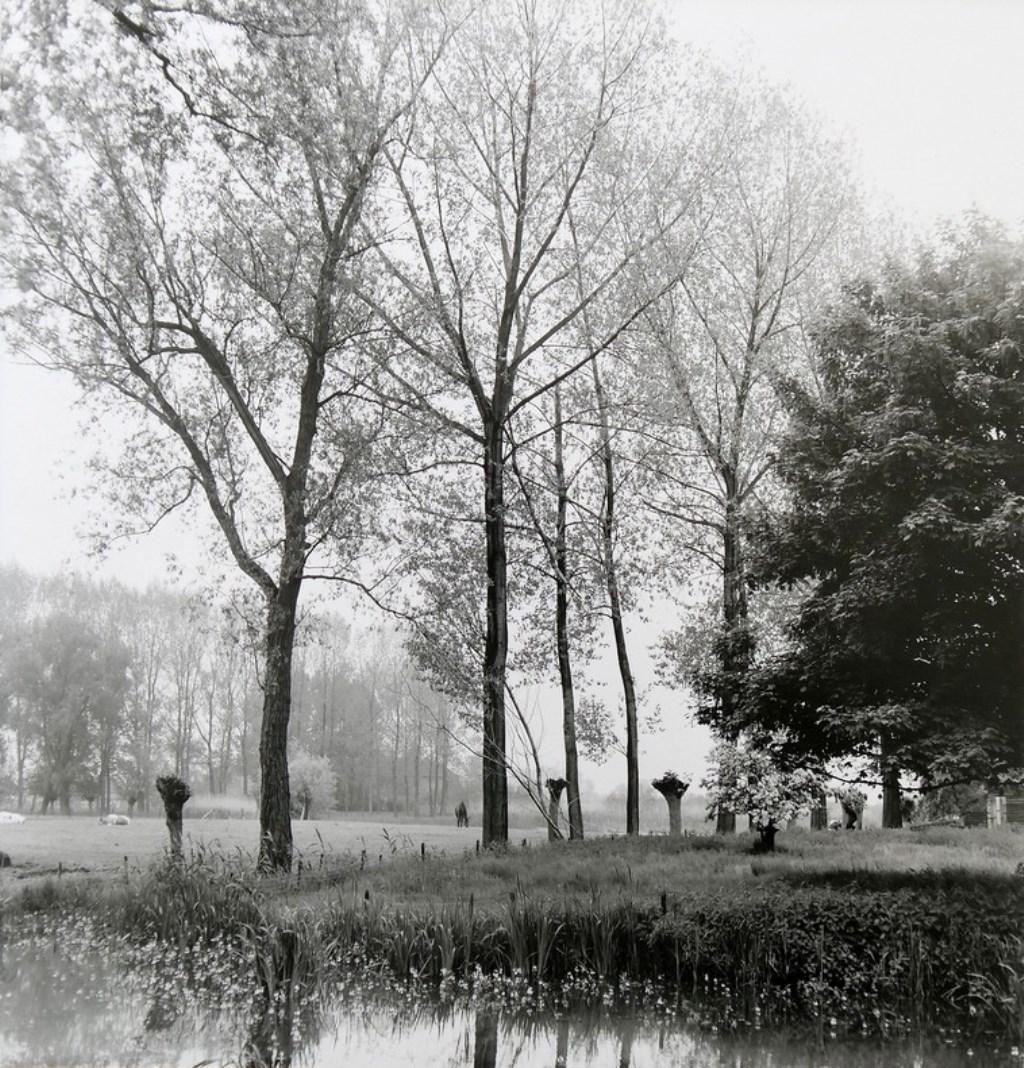 Jean van Roon © DPG Media