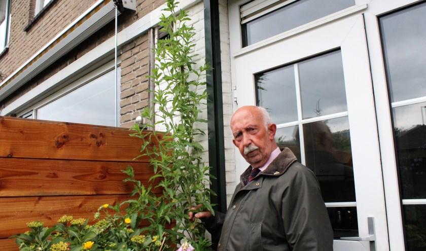 Frederik Leeuwenhoek naast de geheimzinnige plant die in zijn tuin is gaan groeien (Foto Annemarie van der Ploeg)