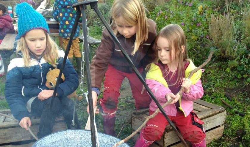 kinderen bakken broodjes boven een kampvuur