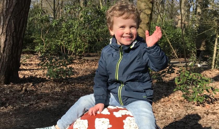Jelle Albers uit Kaatsheuvel is de Jarige van de Week. Aanstaande dinsdag viert hij zijn vierde verjaardag.