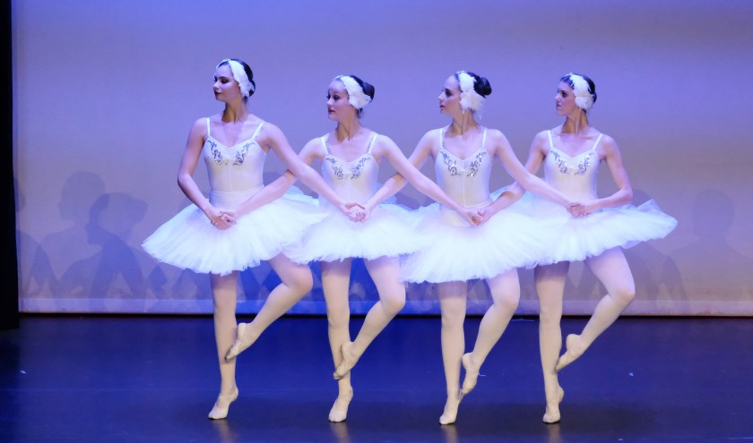 Vier witte zwanen dansen de 'pas de quatre'.