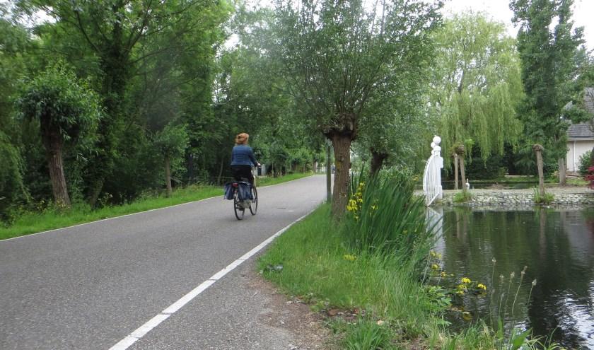 Hoop is er wel: onlangs is de 's-Gravenweg gekozen als traject van de snelfietsroute Rotterdam-Gouda.