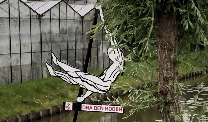 Polsstokspringer/DNA Den Hoorn