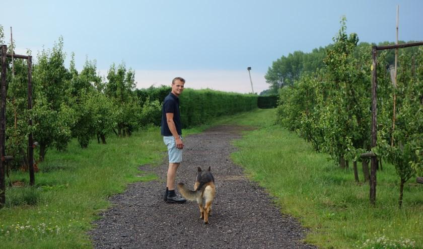 Job in de boomgaard. Het gras rond de boomgaard is langer als huisvesting voor natuurlijke 'bestrijders'. (Foto Michel Plass)
