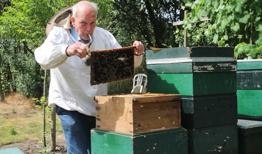 Rotteveel: ''Rook zorgt ervoor dat er geen bijen geplet kunnen worden die op de handvatten van de raat zitten.'' (Foto Lineke Voltman)