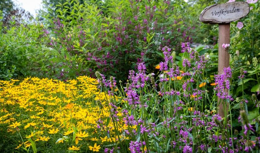 Educatieve tuin. Foto: Lidy Nieuwendijk