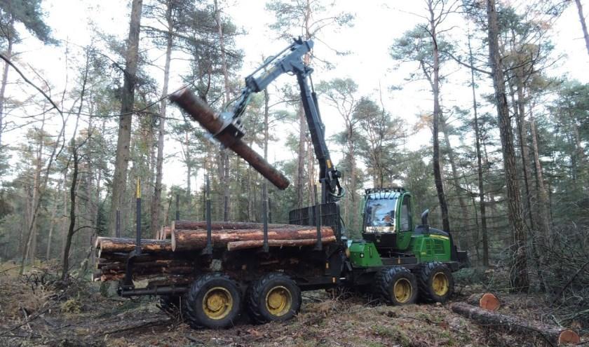 Deze geavanceerde houtoogstmachine kan nauwkeurig en precies werken. FOTO: Staatsbosbeheer.