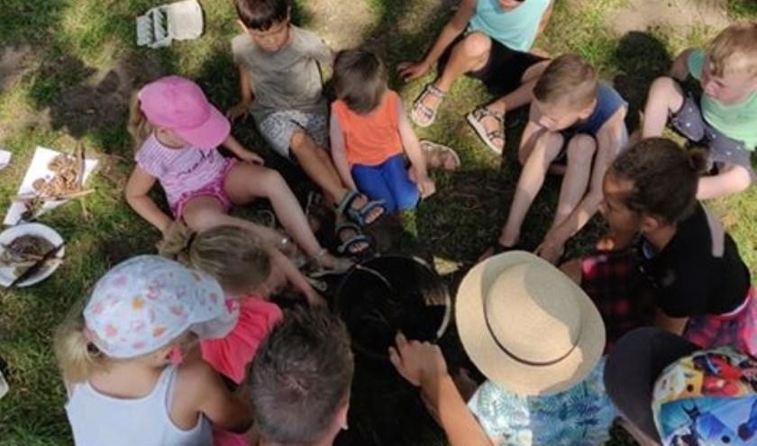 Meer dan 200 kinderen genoten van allerlei leuke activiteiten. Foto: SamenDoen
