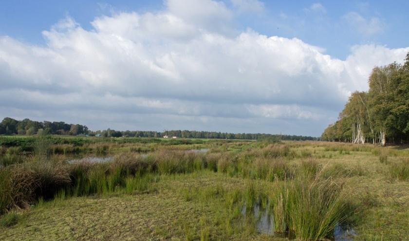 Natuurgebied Vossenbroek. (Foto:  Geldersch Landschap & Kasteelen)