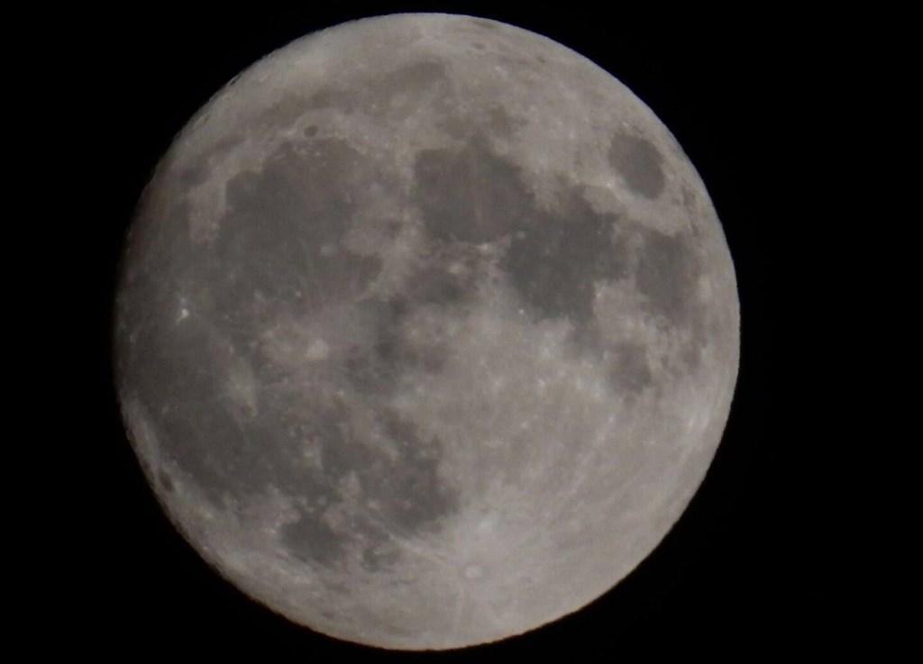 Op 20 juli 1969 hebben er voor het eerst mensen op de maan gewandeld.  (Foto: Jolien van Gaalen).  Foto:  © DPG Media