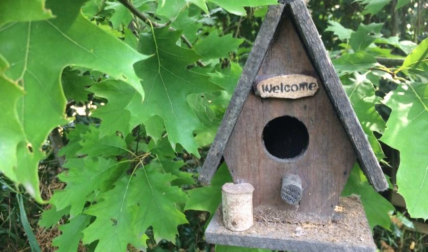 Mezen zijn welkom in de eikenboom