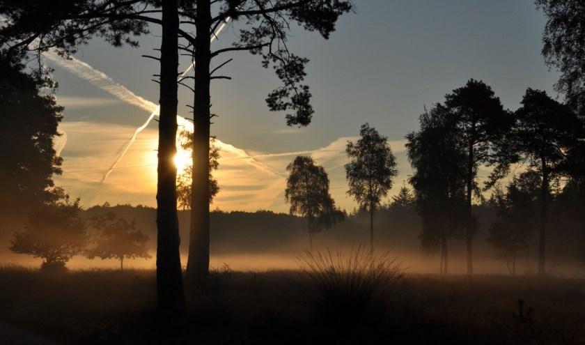 Genieten van een prachtige zonsopkomst tijdens een wandeling over de Sallandse Heuvelrug.