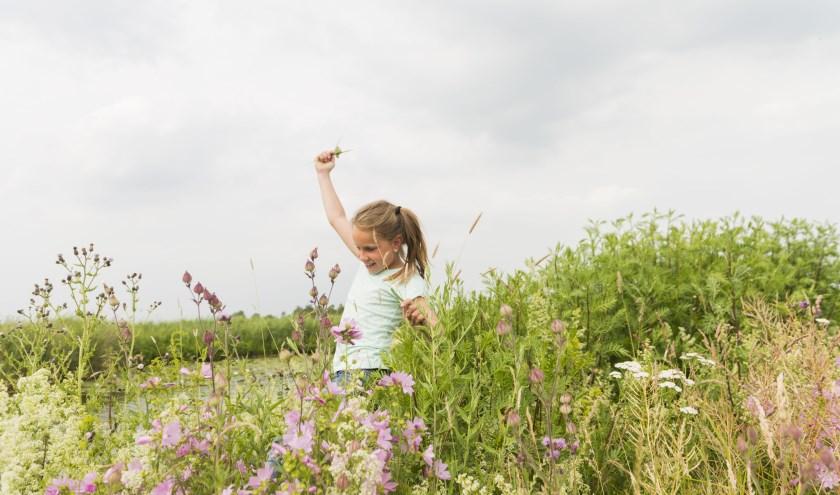 OERRR is het jeugdprogramma van Natuurmonumenten dat alle kinderen van 0 tot 12 jaar zelf de natuur laat ontdekken.