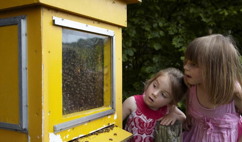 Kinderen ook op 18 augustus meer leren over bijen. (Foto: Natuurmonumenten – Laurence Delderfield)