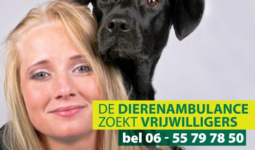Vrijwilliger dierenambulance.
