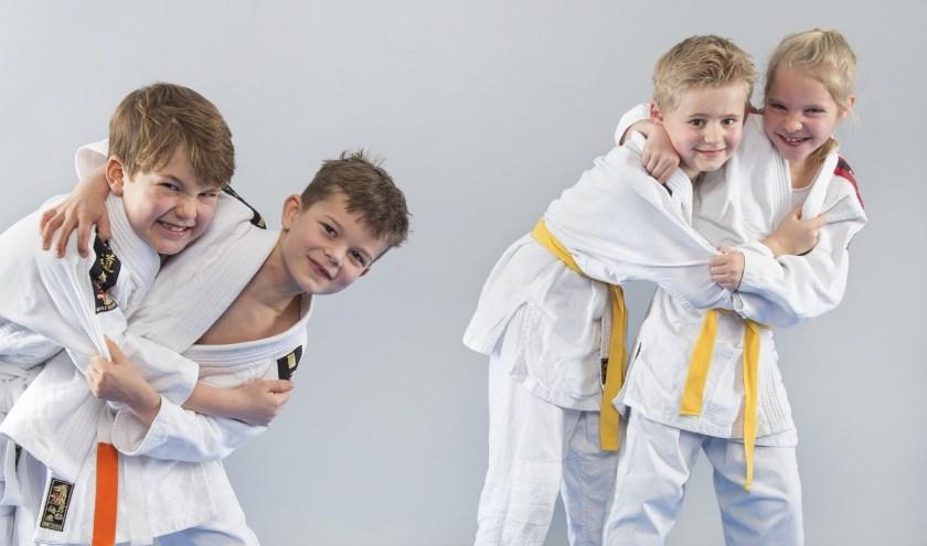 Judolessen in Ter Aar.