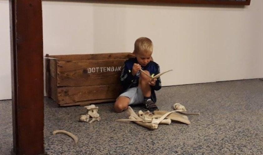 De Bottenbak wist de aandacht te trekken van David. Vol interesse heeft hij de botten van het edelhert bekeken. (Foto: Natuurmuseum Holterberg)