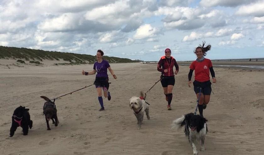 Een beeld van CAS18. Met de hond voor je en aan de lijn lekker hardlopen. Beeld: Canicross Zeeland