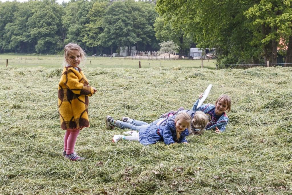 Dat is leuk: de Zomerspelen op Hof Espelo. Foto: Henrica de Joode Foto: Henrica de Joode © DPG Media