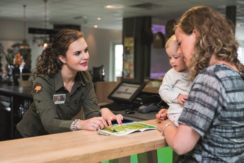 Alle informatie over het traineeship is te vinden op de website www.veluweacademy.nl.