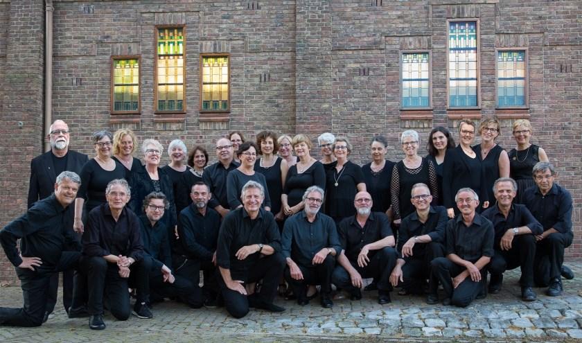 Vocaal Ensemble Cantare onder leiding van dirigent Pim Overduin. FOTO: VERSTRAATEN