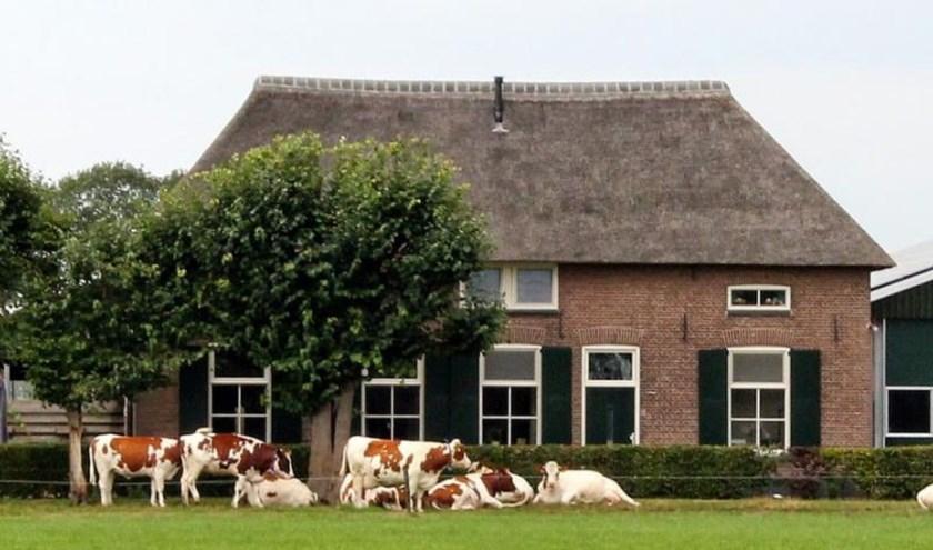 De stichting IJsselhoeven heeft al de afgelopen 15 jaar enorm veel werk verzet in het behoud van de vele karakteristieke boerderijen  en erven in de IJsselvallei.