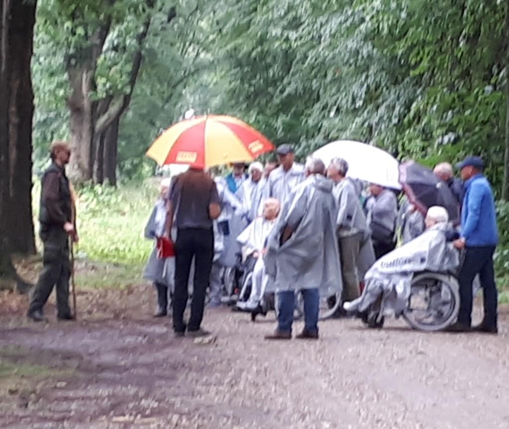 Groep die met de boswachter op pad gingen Foto: C Booman © DPG Media