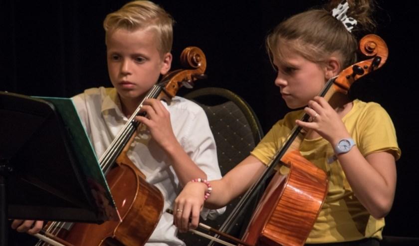 Ook celloles behoort tot de mogelijkheden. (Foto: Dick Sanderman)