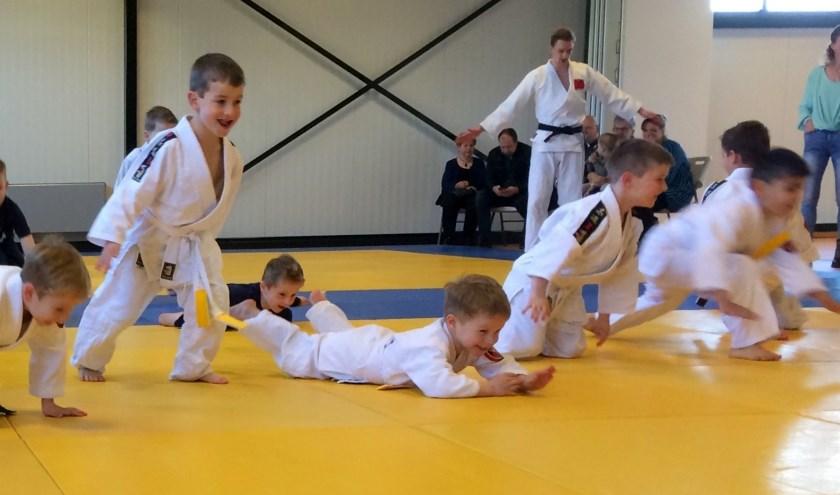 Judo Losser gaat na de vakantie weer beginnen en houdt een aantal proeflessen.