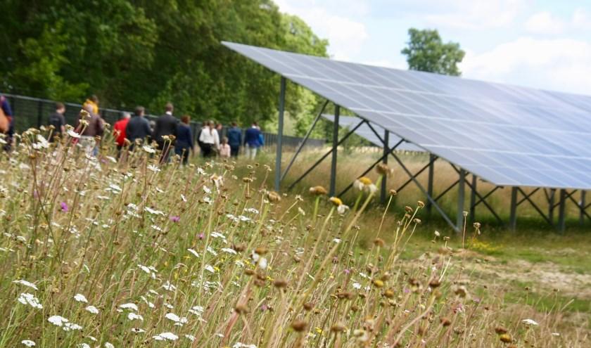 Zonnevelden (hier het park op De Laarberg) worden landelijk ingepast. Foto: Eveline Zuurbier Foto: Eveline Zuurbier