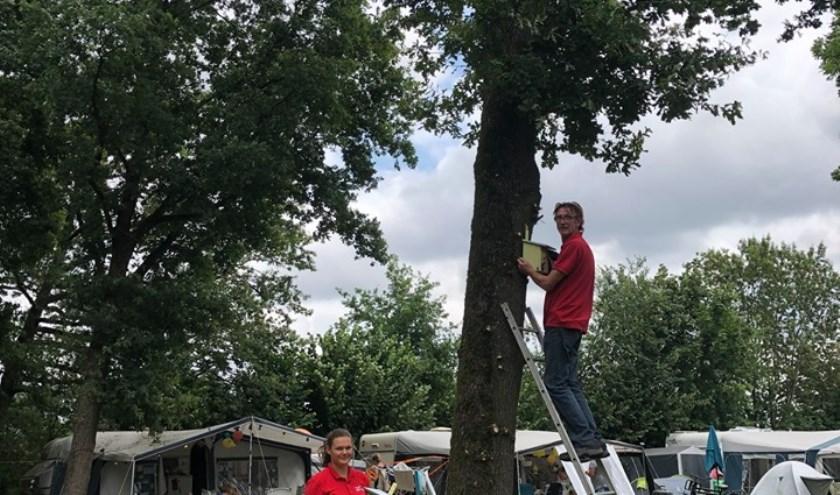 Medewerkers van het Witven zorgen dat alle nestkastjes goed opgehangen worden op het vakantiepark.