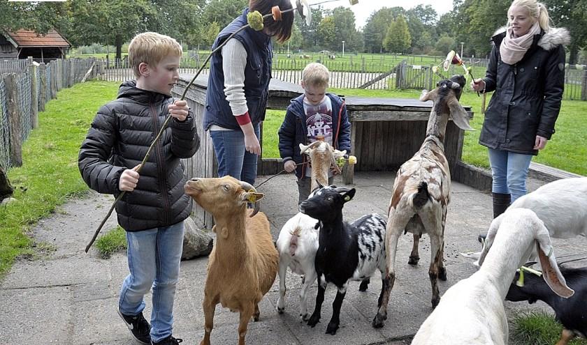 De Höfte maakt van dierendag een leuke dag voor de dieren én voor de bezoekers. Foto: Jack Amels