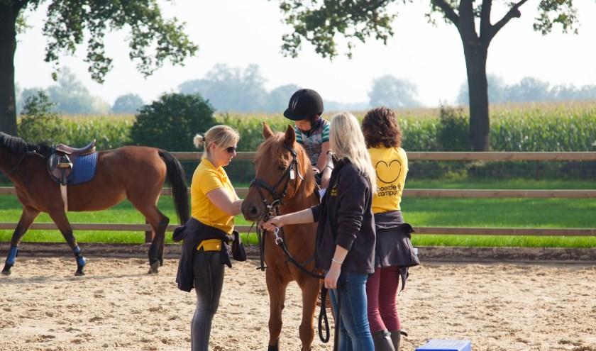 Erve Meinders wil iedereen op zoveel mogelijk manieren kennis laten maken met de paardensport.
