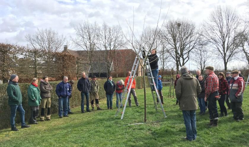 De gratis cursus Alles van het landschap Herwen &Aerdt kent ook een praktijkochtend. (foto: PR)