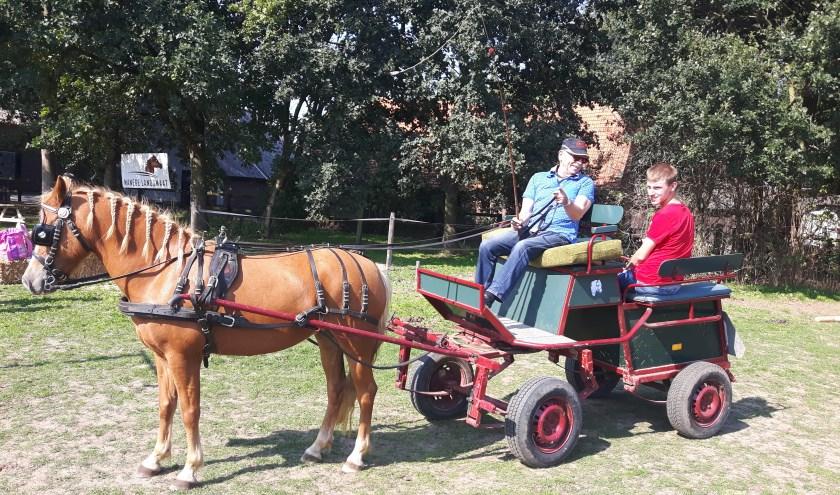 Tom op de koets tijdens de pony- en koetsendag van vorig jaar.