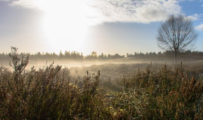 Landgoed Petrea. (Foto: Geldersch Landschap & Kastelen)