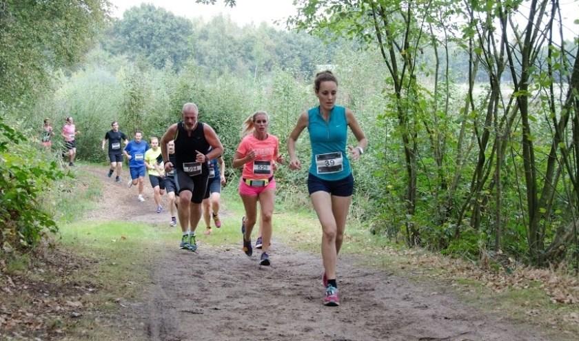 AV Twenterand begint op 12 oktober met de herfsteditie van de Lageveldlopen.