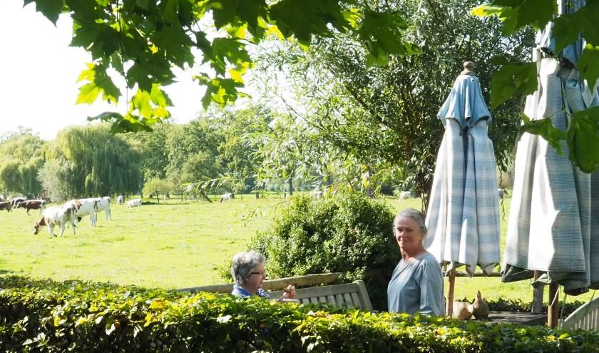 Maartje van Beusekom met een klant op het terras. Op de achtergrond de koeien van de boerderij. FOTO: Ellis Plokker