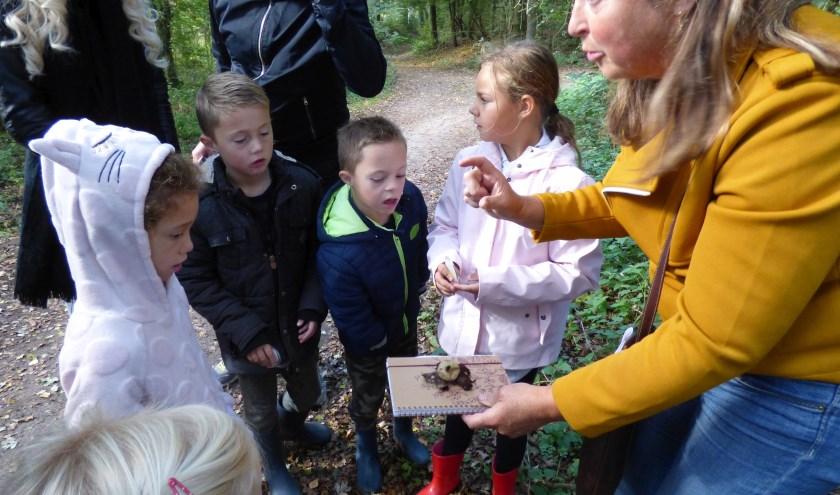 Vorig jaar konden de deelnemers zich verheugen op een heleboel paddenstoelen. Gehoopt wordt dat er dit jaar ook veel te vinden zijn.