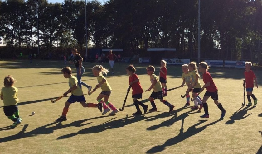 Hockeyverenigingen MHCD en VMHC presenteren de 9e hockeykampioenschappen voor basisschoolleerlingen uit de gemeente Heusden en Engelen.