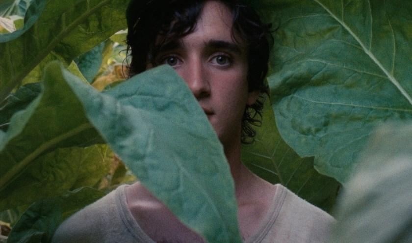 Het moderne sprookje Lazzaro Felice won een prijs in Cannes en is op 17 september te zien in Oldenzaal.