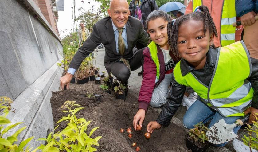 Leerlingen school De Vierambacht en wethouder Wijbenga beplanten eerste nieuwe geveltuin