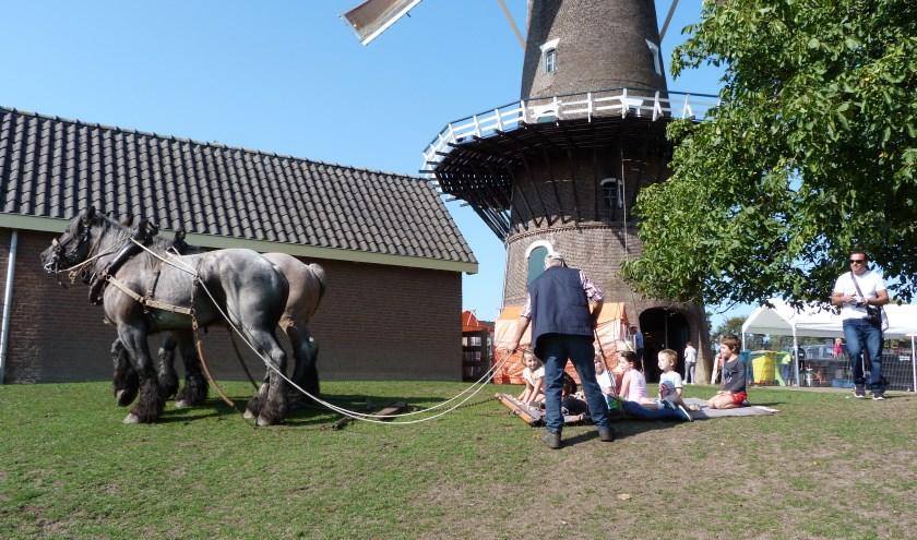 Molen De Onvermoeide in Raamsdonksveer (foto: Els Smans)