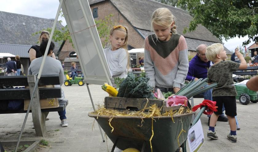 Directeur Monique Verstraten deelt trots taartjes uit met het nieuwe logo van Natuurcentrum Arnhem aan bezoekers van het Oogstfeest. (foto: Susanne Reuling)