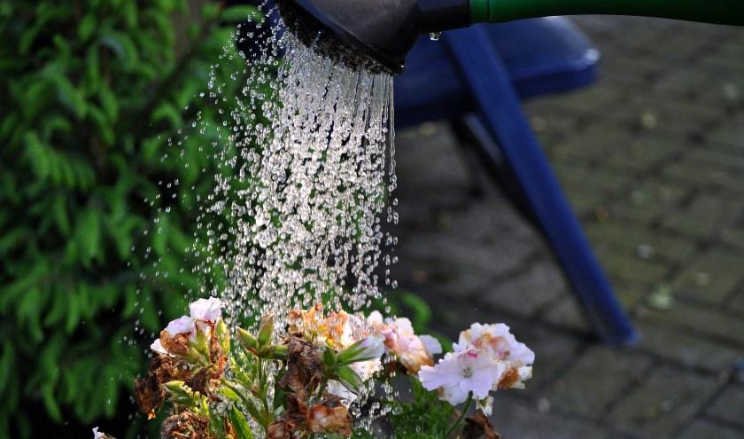 Plaats een regenton en wordt 'eigenaar' van het water. Het meeste regenwater gaat namelijk rechtstreeks het riool in. En dat is zonde.