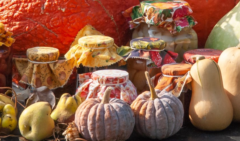 Zaterdag 14 september is de jaarlijkse Oogstfair in De Boschhoeve.