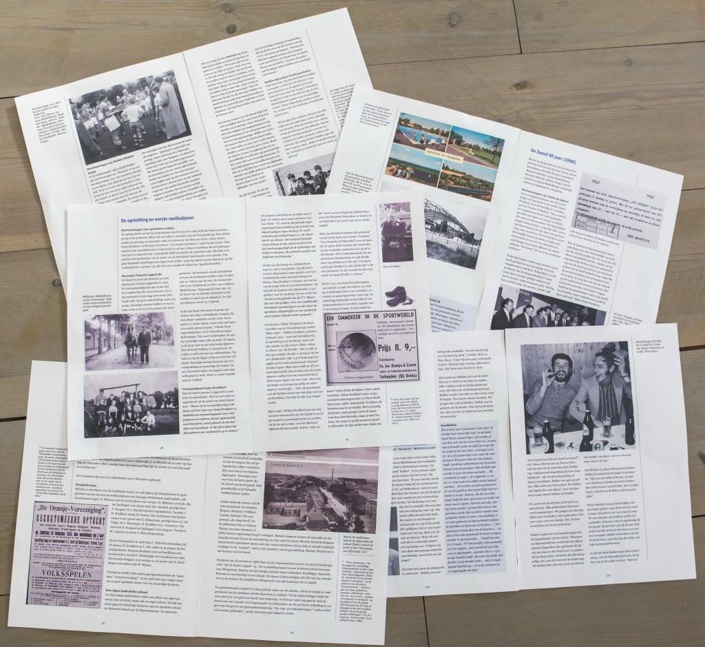 Collage van pagina's uit deel 1 van de serie over De Zweef.  © DPG Media